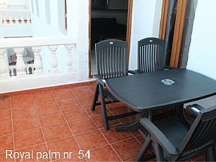 Royal Palm 54 Ude